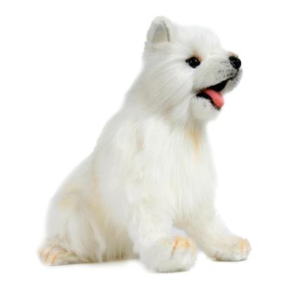 5267번 사모예드 Dog Samoyed Pup/28cm.L