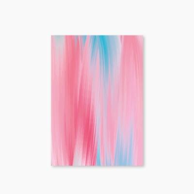 [Marbling Series] Type D - Blue Pink 유선노트