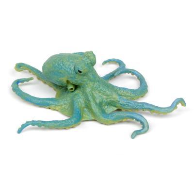 200929 문어 Octopus