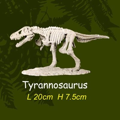 공룡뼈발굴(대형) - 티라노사우루스
