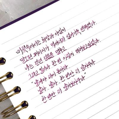 [세트] 이상 시인 잉크 30ml 5종 전체 세트