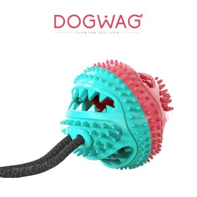로프덴탈토이 강아지 터그놀이 장난감 치석제거