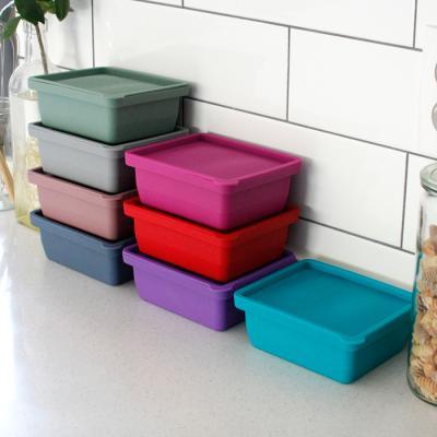 (국산) 실리콘 냉장 냉동 보관용기(2구) - 8color
