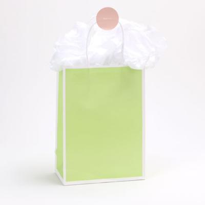 그린라인 쇼핑백 (5개)