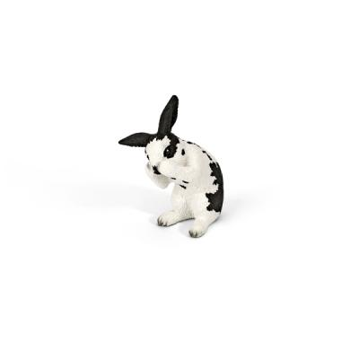 털을 다듬는 토끼