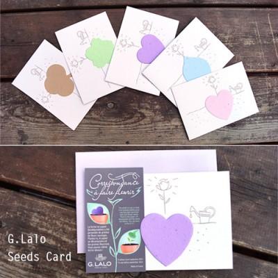 [조지라로] 씨앗카드(5가지색상)