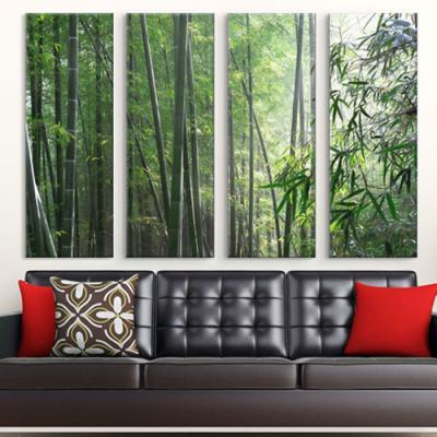 cx632-초록빛대나무숲_대형노프레임세트