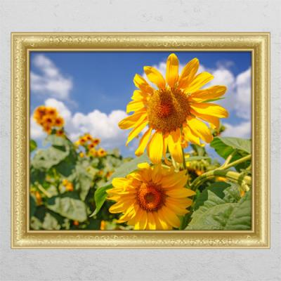cl894-풍수운이가득한해바라기꽃밭_창문그림액자