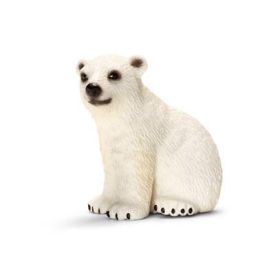 새끼 북극곰