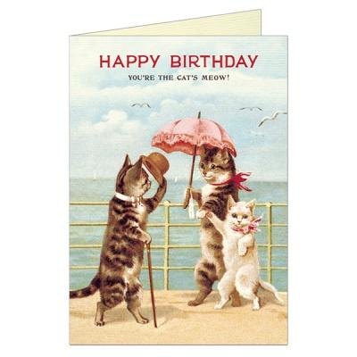 카발리니 생일카드 Cats