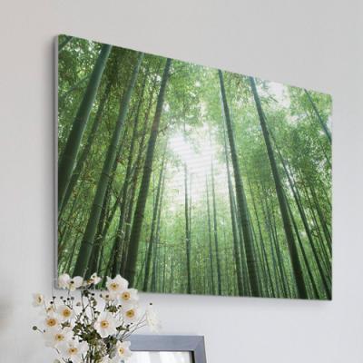 cl746-폼아크릴액자78CmX56Cm_울창한대나무숲