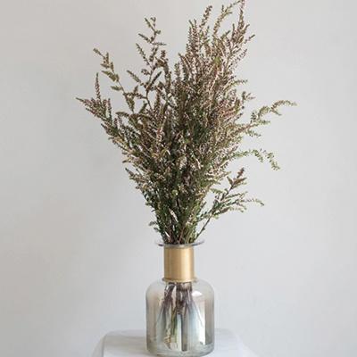 쓰립토메인 생화 인테리어 식물