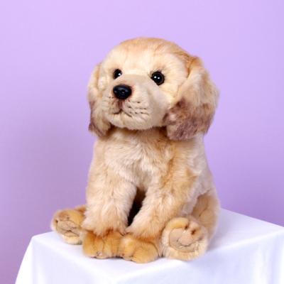 이젠돌스 위더펫 리얼 강아지 인형 골든리트리버 시팅