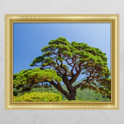 cl498-푸르른소나무_창문그림액자