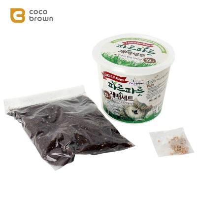 코코브라운 파릇파릇 재배세트 보리 고양이냥이닙