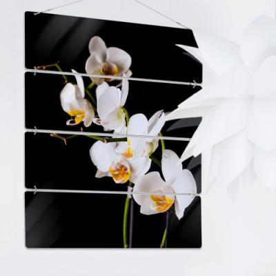 nl508-멀티아크릴액자_아름다운난초(4단대형)