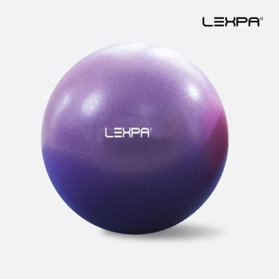 렉스파 YH-32 퍼플 30cm 짐볼 미니 피트니스볼