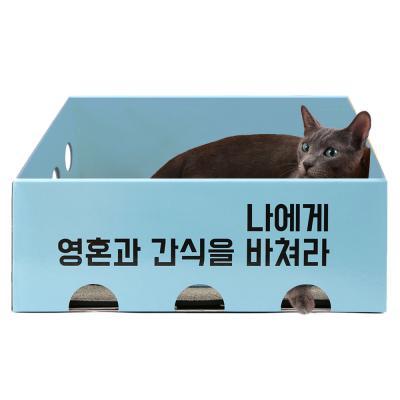 [노리노리캣] 카펫 스크래쳐 박스 (블루)