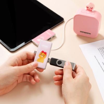 카카오프렌즈 4in1 멀티 허브(USB PD 100W)