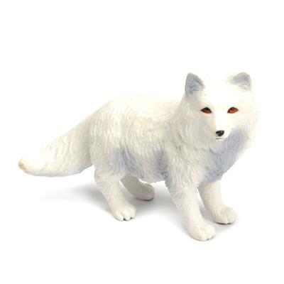282329 북극여우 Arctic Fox
