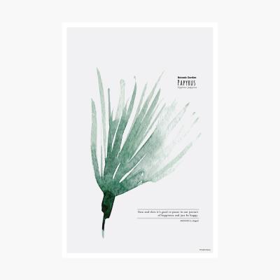 보타닉가든 포스트카드 엽서 - Papyrus
