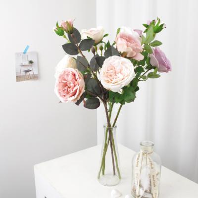 고속터미널꽃시장 장미꽃 가지 50cm 시들지않는꽃