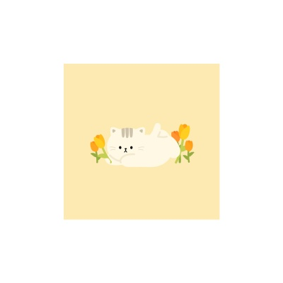 민트초코 튤립 엽서