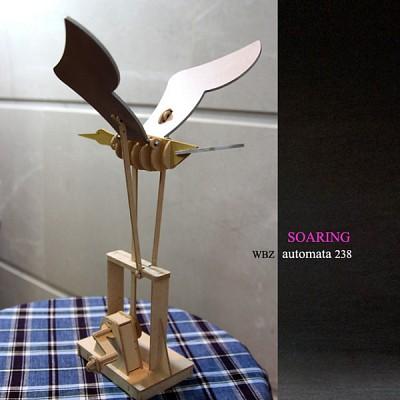 원대한 날개짓 - Soaring