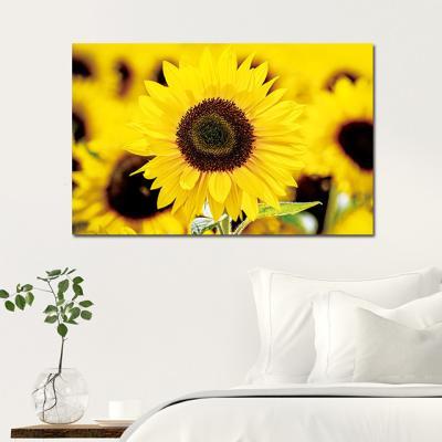 캔버스액자 해바라기 노란꽃 D타입 35x55cm