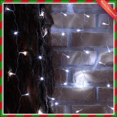 400구 투명선 LED 롱커튼 백색전구(1.9M) (점멸有) (
