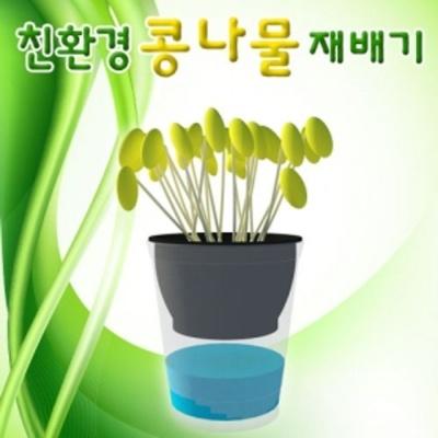 친 환경 콩나물 재배기 1인용