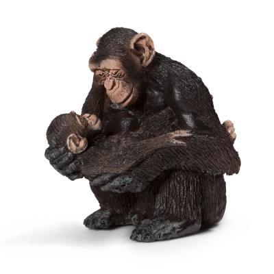 암컷 침팬지와 새끼 침팬지