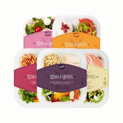 [원더그린]  당일생산 밥보다 샐러드 10종 5팩