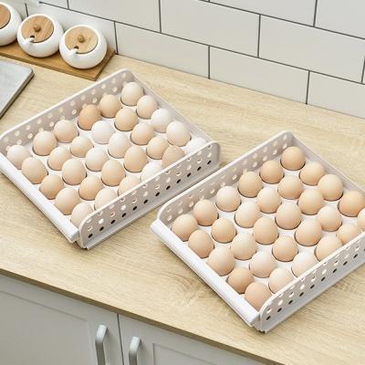 냉장고정리 싱싱 계란케이스(60구)