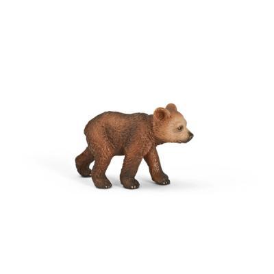 새끼 그리즐리 곰