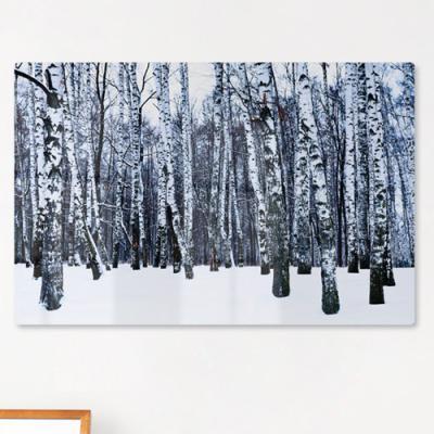 te170-폼아크릴액자58CmX38Cm_겨울자작나무숲