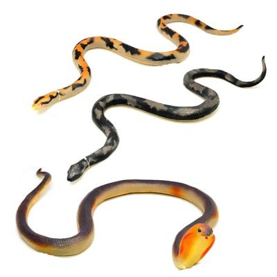데코앤 소프트 뱀 (중)