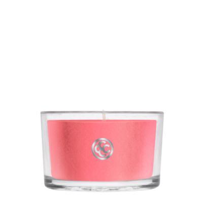 COLONIAL CANDLE 1234글래스 티라이트 캔들 딸기 루바브