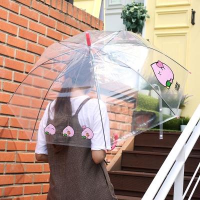 핑크풋 6000당친투명우산