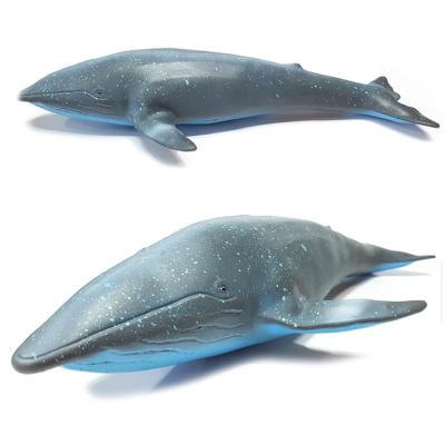 소프트 해양 (중) 흰수염고래 모형 피규어 교육용