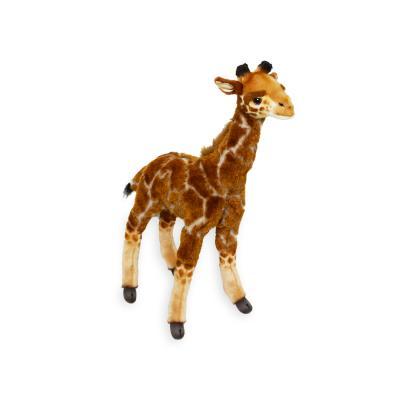 7810 기린 동물인형/50cm.H