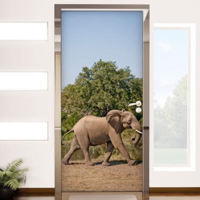af646-앞으로걸어가는풍수코끼리_현관문시트지