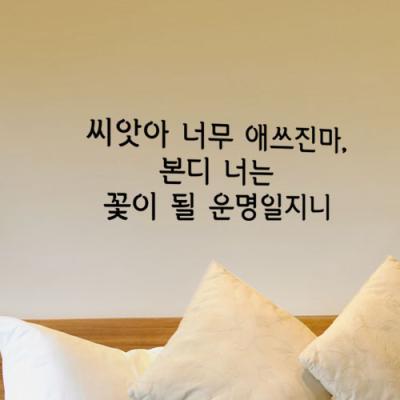 il737-꽃이될운명일지니_그래픽스티커