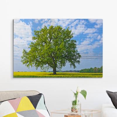 da035-폼아크릴액자58CmX38Cm_싱그러움넘치는봄나무