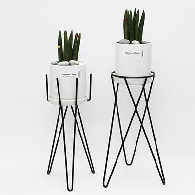 화분스탠드+W.공기정화식물 세트