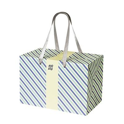 PLUSBOX GIFT BAG (Purple & Emerald Stripes) (쇼핑백/포장박스)