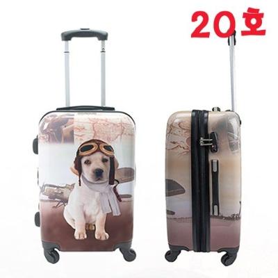 펫콜렉션 기내용 20호 캐리어 (올디스) 여행용가방