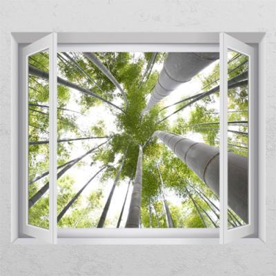 cr795-아래에서본대나무_창문그림액자