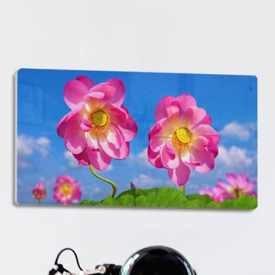 af850-폼아크릴액자38CmX18Cm_부귀를부르는풍수연꽃