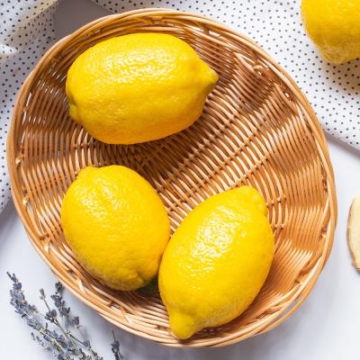 신선플레이 미국산 레몬 2kg 15-17과 중